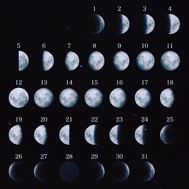 満月 新月 手作り石けん WS ・ご予約いただきだしております・月は 本来はつねに丸く在り続けているのにここ地球に住む 私たちには 満ちたり かけたり消えてみえたり そして満月 新月の日には潮の満ち引きにより 出産がおおくなったりしますそんな 大きなエネルギーを感じながら純粋に 楽しむ というコトをするそんな 手作り石けんのWS をこれから コツコツ おこないます3/12(日) 満月3/28(火) 新月4/11(火) 満月4/26(水) 新月5/11(木) 満月5/26(金)新月・11:00〜21:00 お好きなお時間にご予約ください その時の気温にて出来上がりの誤差がありますので 2時間から3時間をめどにお越し下さい・内容 mooncrystalWater (月とハーキマーダイヤモンドで浄化したお水)をつかって オリーブオイル ココナツオイル パームオイルを使った手作り石けんをつくります柄香りもつけていただきます牛乳パック1本分の容量持ち物 エプロン 牛乳パックが横にしてはいる保冷バッグそれ以外はこちらでご用意します・受講費 4000+tax場所 become 東海市富木島町伏見1-16-3パーキング 2台有・ご予約はDMより♡もちろんおひとりさまからOKですかわいい 楽しい石けんを一緒に♡.#手作り石けん#手作り石けん教室#満月石けん教室#新月石けん教室